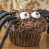 Vegan Spider Cupcakes