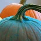 Teal Pumpkin Project and the Teal Suede Pumpkin