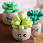 Clay Succulents Craft
