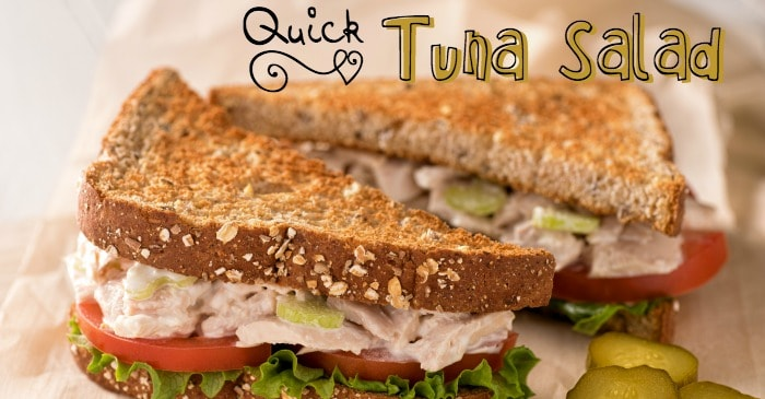 3 ingredient tuna sandwich