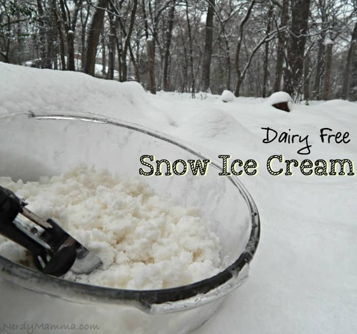 Dairy Free Snow Ice Cream Pin