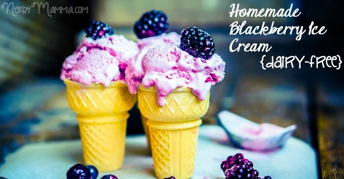 dairy free blackberry ice cream