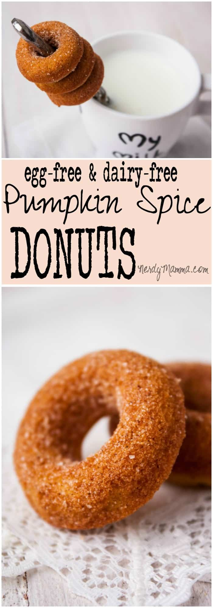 My kids gobbled-up ALL of these ridiculously yummy pumpkin donuts! They were so awesome!