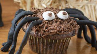 cute spider cupcake feature
