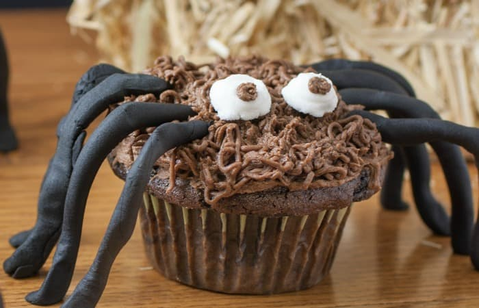 cute spider cupcake feature