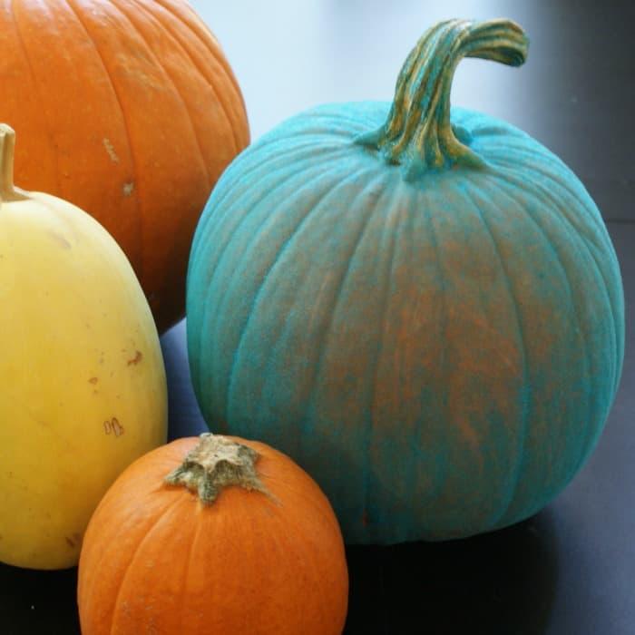 easy teal pumpkin project idea sq
