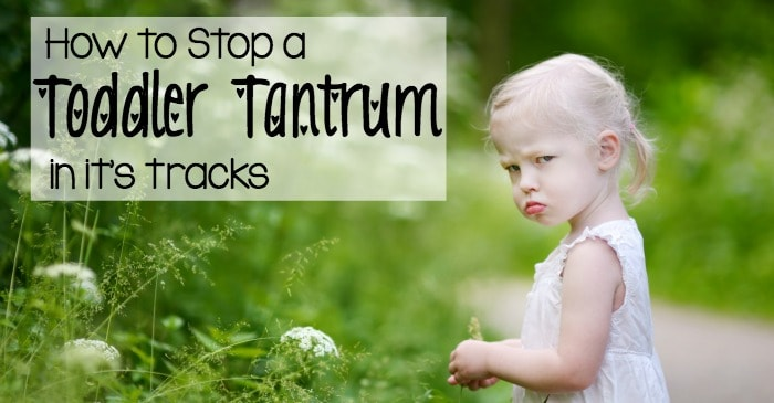how to stop a toddler tantrum in it's tracks fb