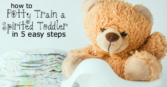 potty training an strong-willed child fb