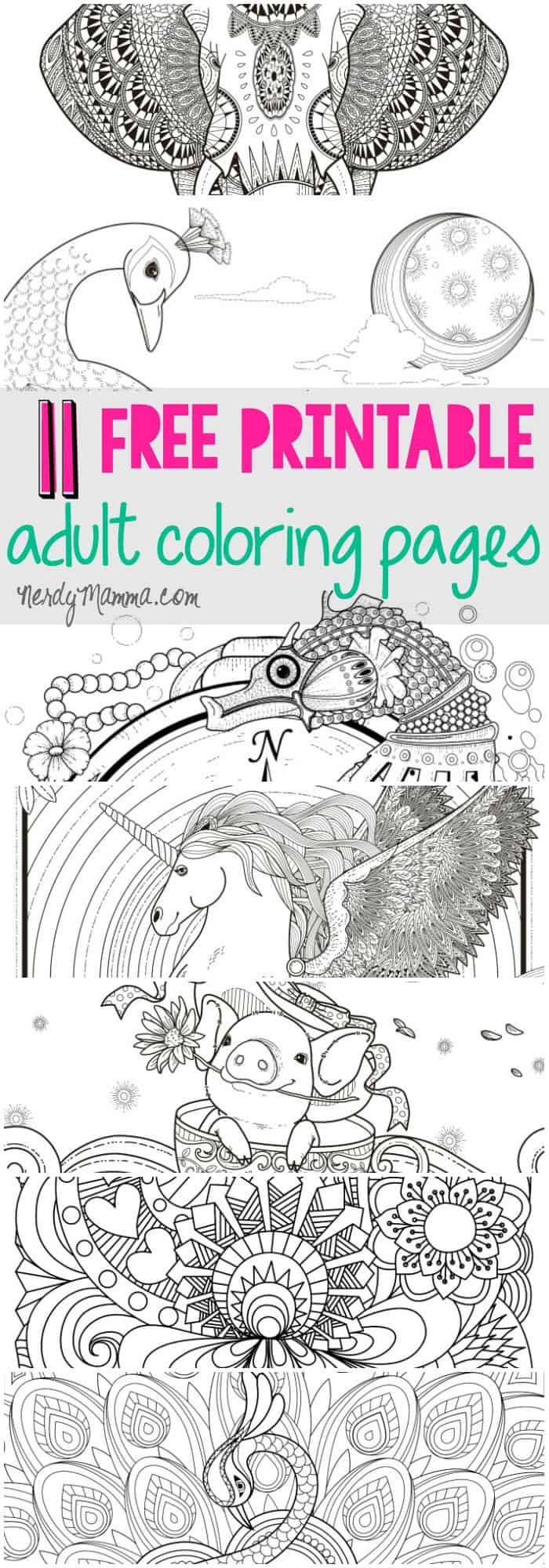 I love these free printable adult coloring pages. a page for every level of coloring skill. Love it!