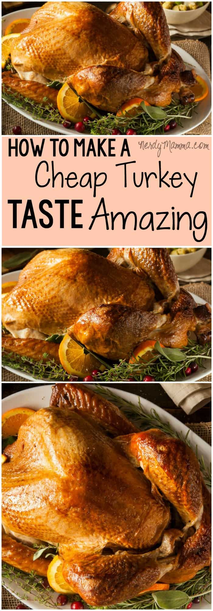 I love this recipe for making a cheap turkey taste awesome. Its so simple and sounds great!
