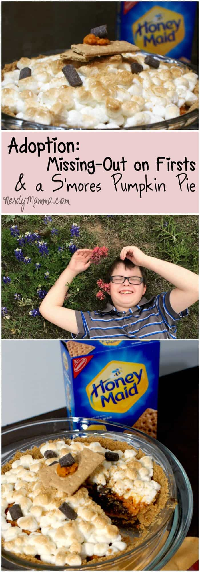 I love this story about adoption of an older kid. And the Vegan S'mores Pumpkin Pie isn't bad either! LOL!