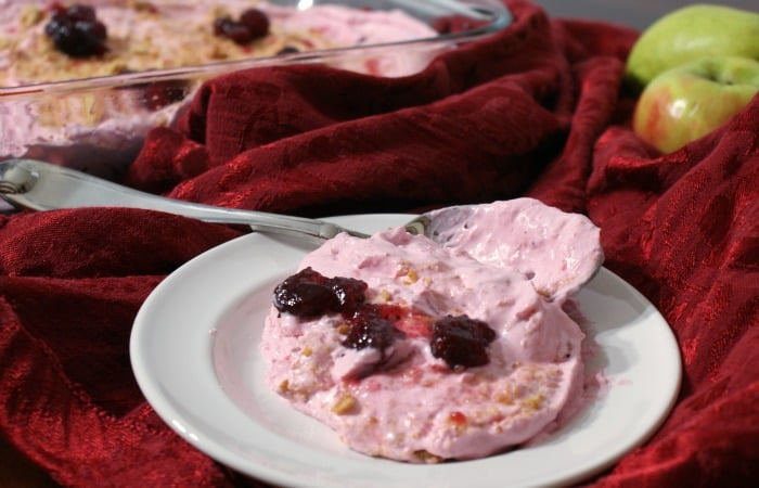 Mamma's Famous Cranberry Salad feature