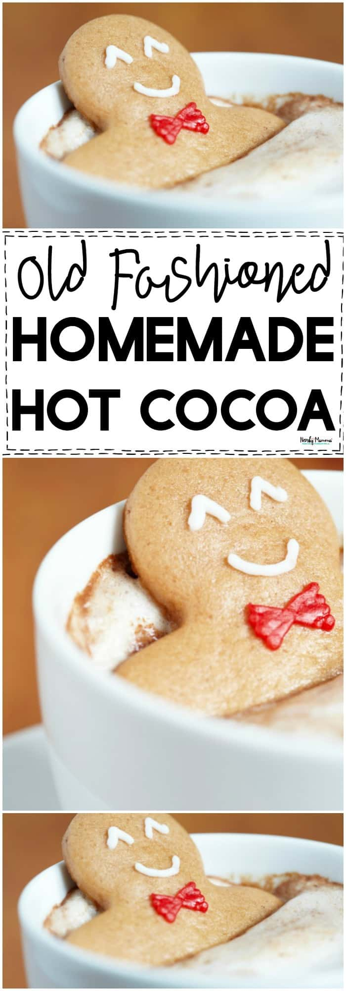 You've GOT to check out this old fashioned homemade hot cocoa recipe. It's to DIE for!