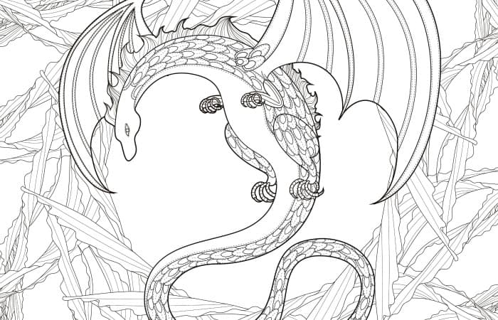 final dragon coloring page pic