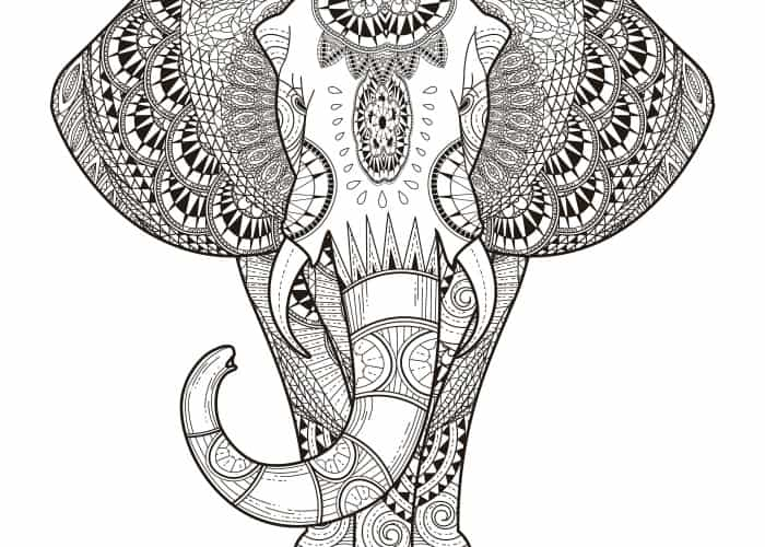 final elephant coloring page pic