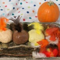 Build Your Own Turkey Invitation to Play