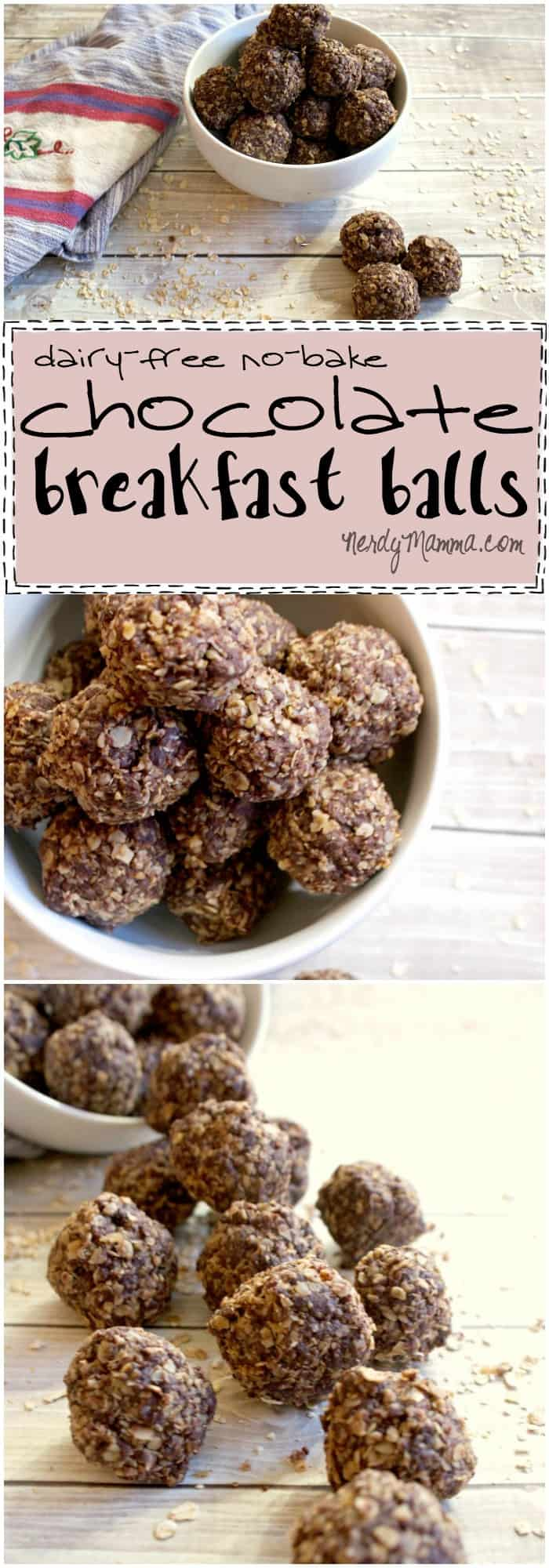 I. Am. In. Love. These no-bake, dairy-free chocolate breakfast balls are easy, yummy and totally decadent. I mean, chocolate for breakfast!
