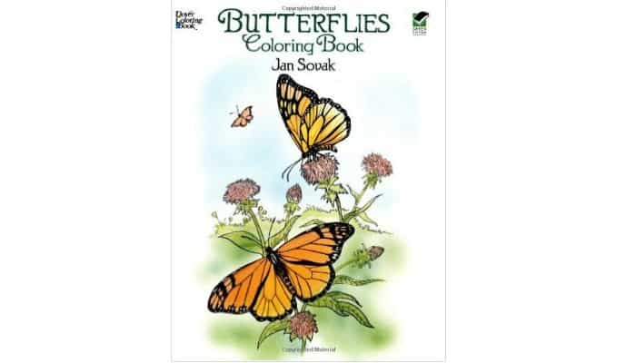 adult coloring book with butterflies
