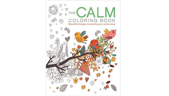 cheap coloring books for adults