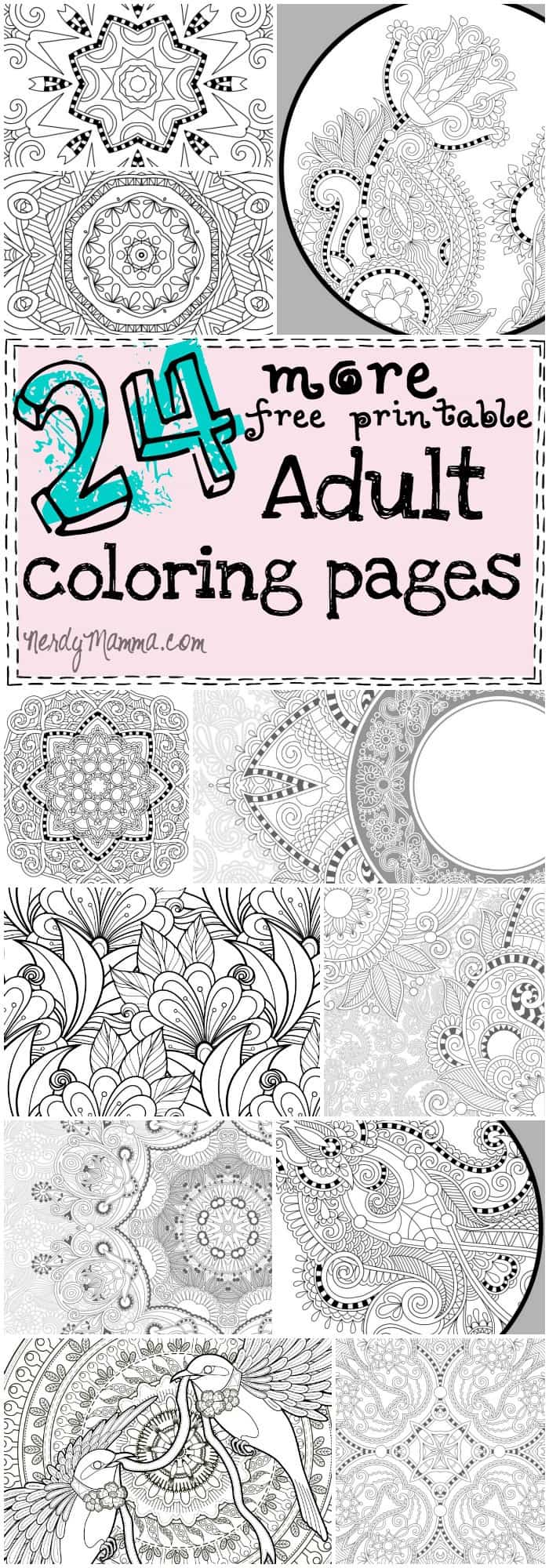 This is the coolest set of free printable adult coloring pages ever. There's 24 of them and they're all so beautiful!