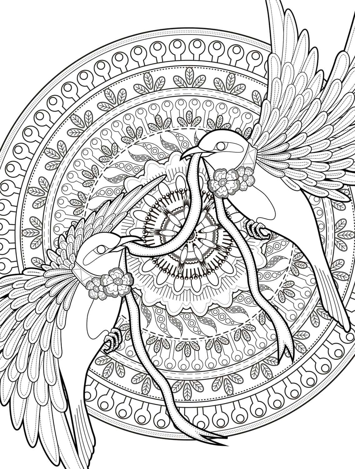 Printable drawing pages for adults - Adult Coloring Pages With Birds Free Downloadable Web