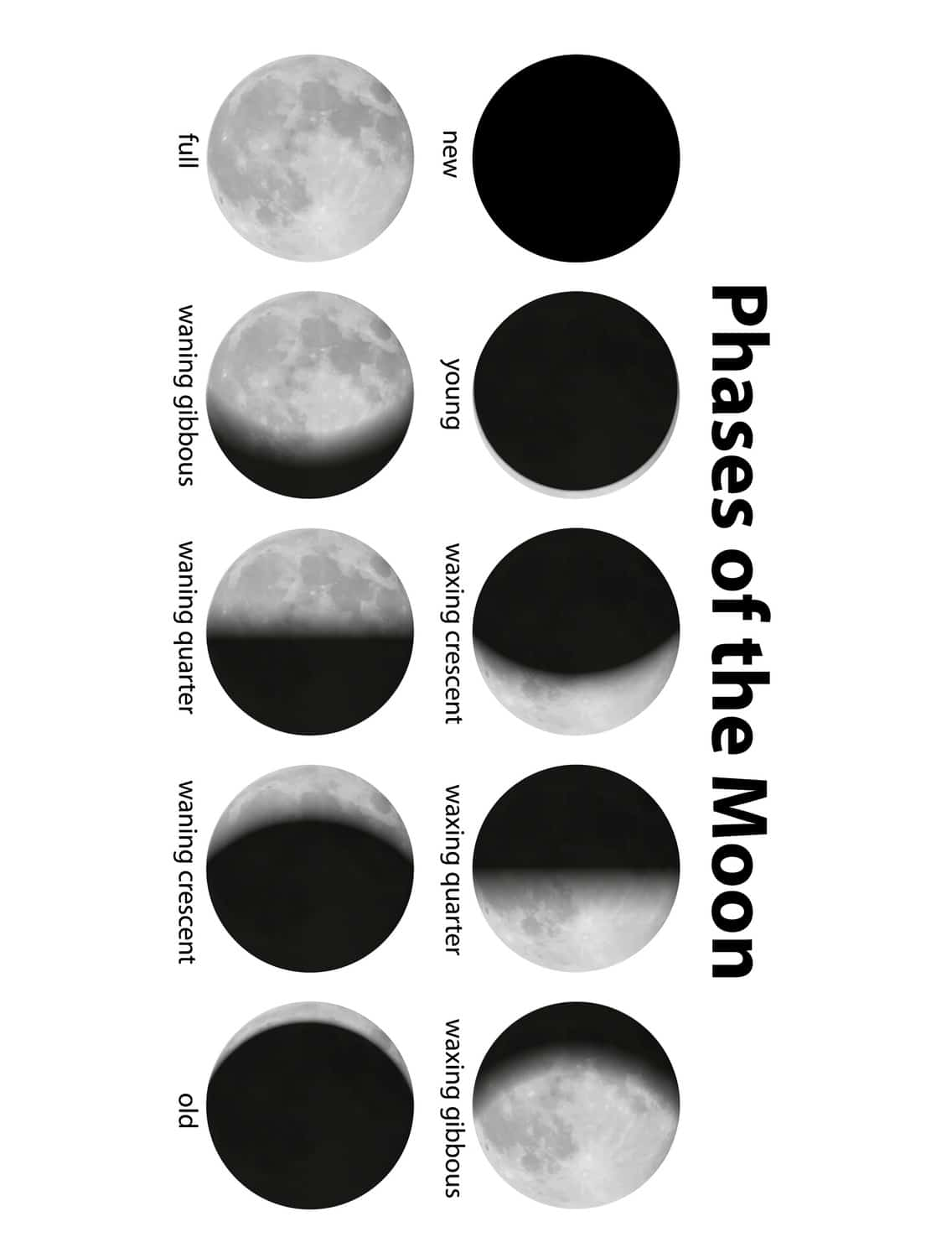 Moon Phases Kid Video