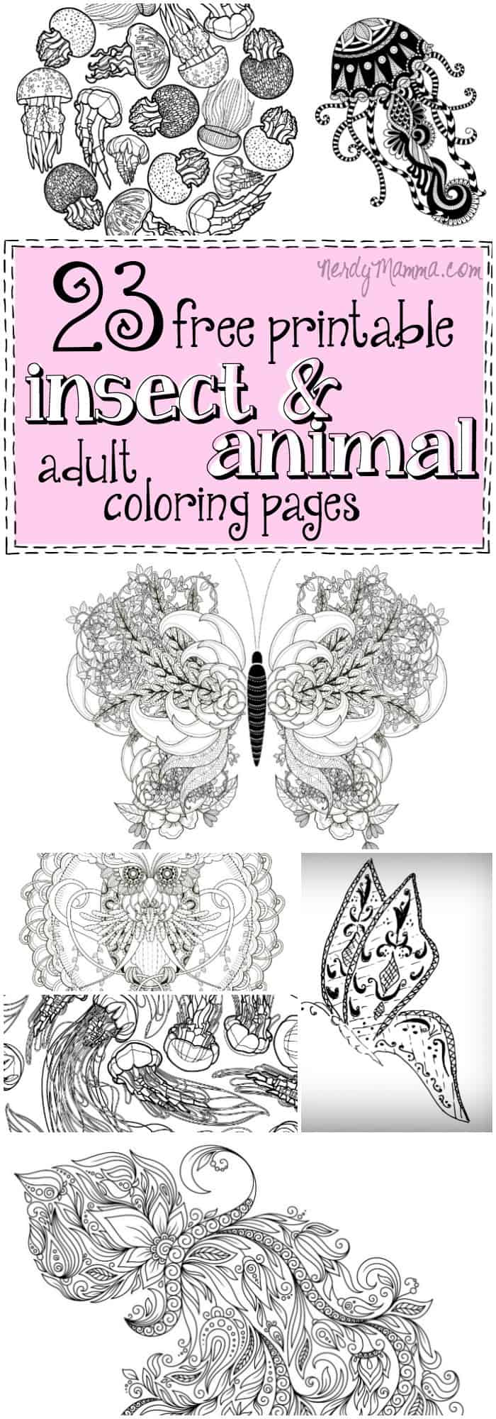 I love these awesome animal and insect adult coloring pages! Especially all the jellyfish. I could color those all day.