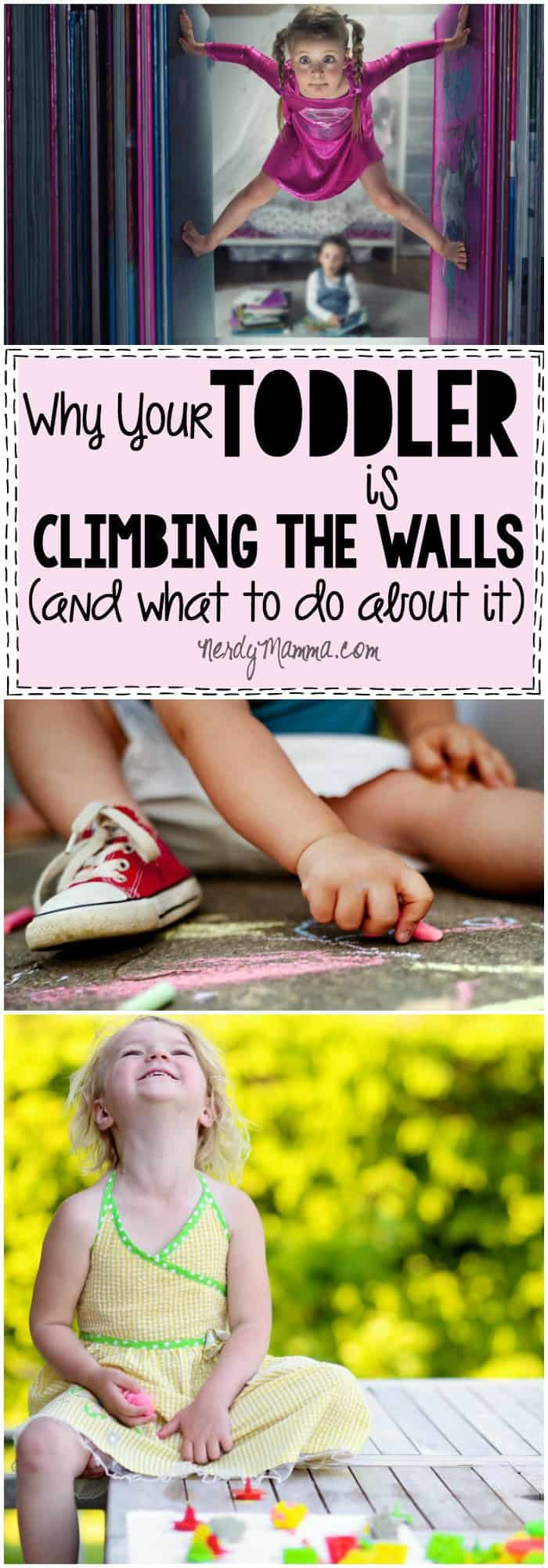 I love these thoughts on Why Your Toddler is Climbing the Walls--and the ideas for how to deal with it. So funny!