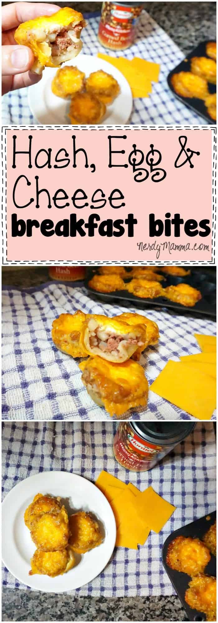 These Hash, Egg and Cheese Breakfast Bites look so amazing. It's an easy recipe I'd love to try!