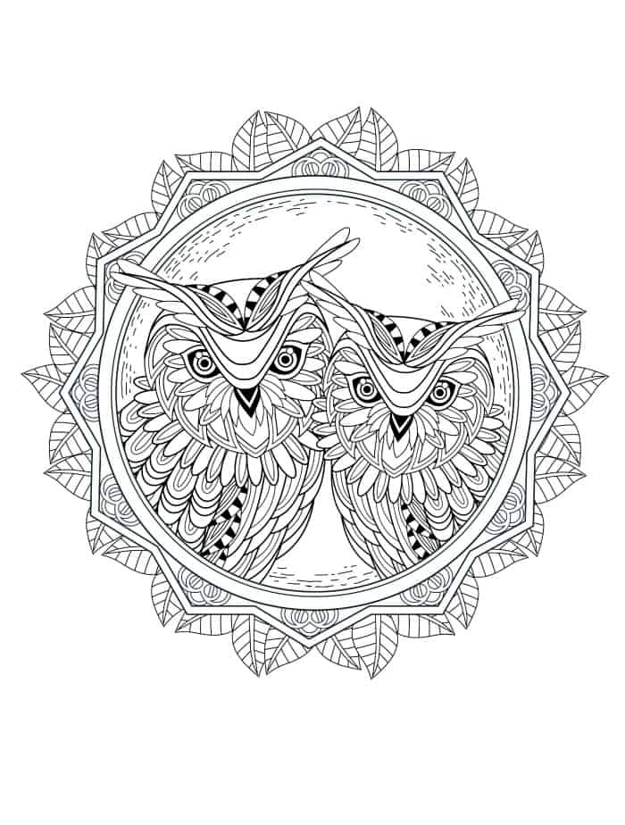 beautiful owl coloring pages for adults pic