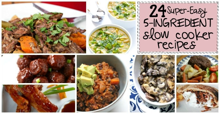 easy slow cooker recipe ideas fb2