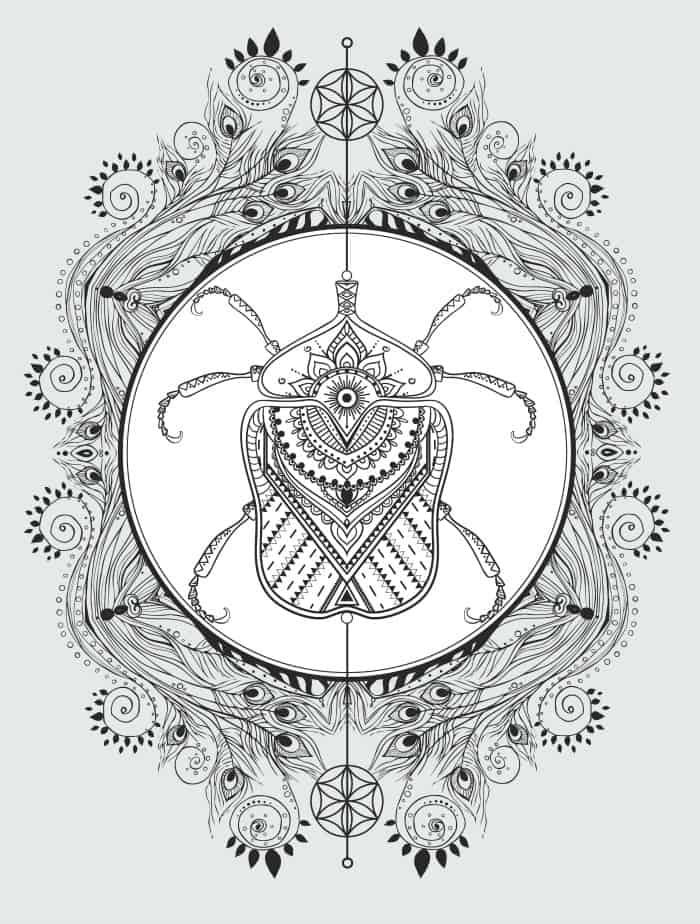 free downloadable insect adult coloring pages pic