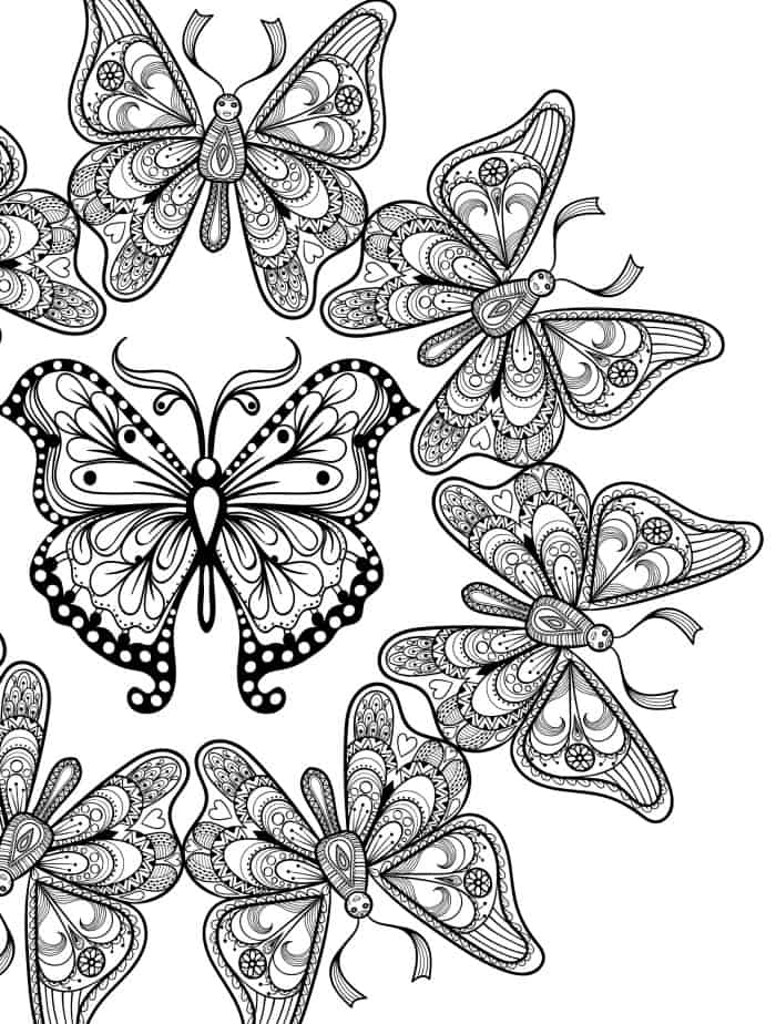 free printable coloring pages for adults with insects pic