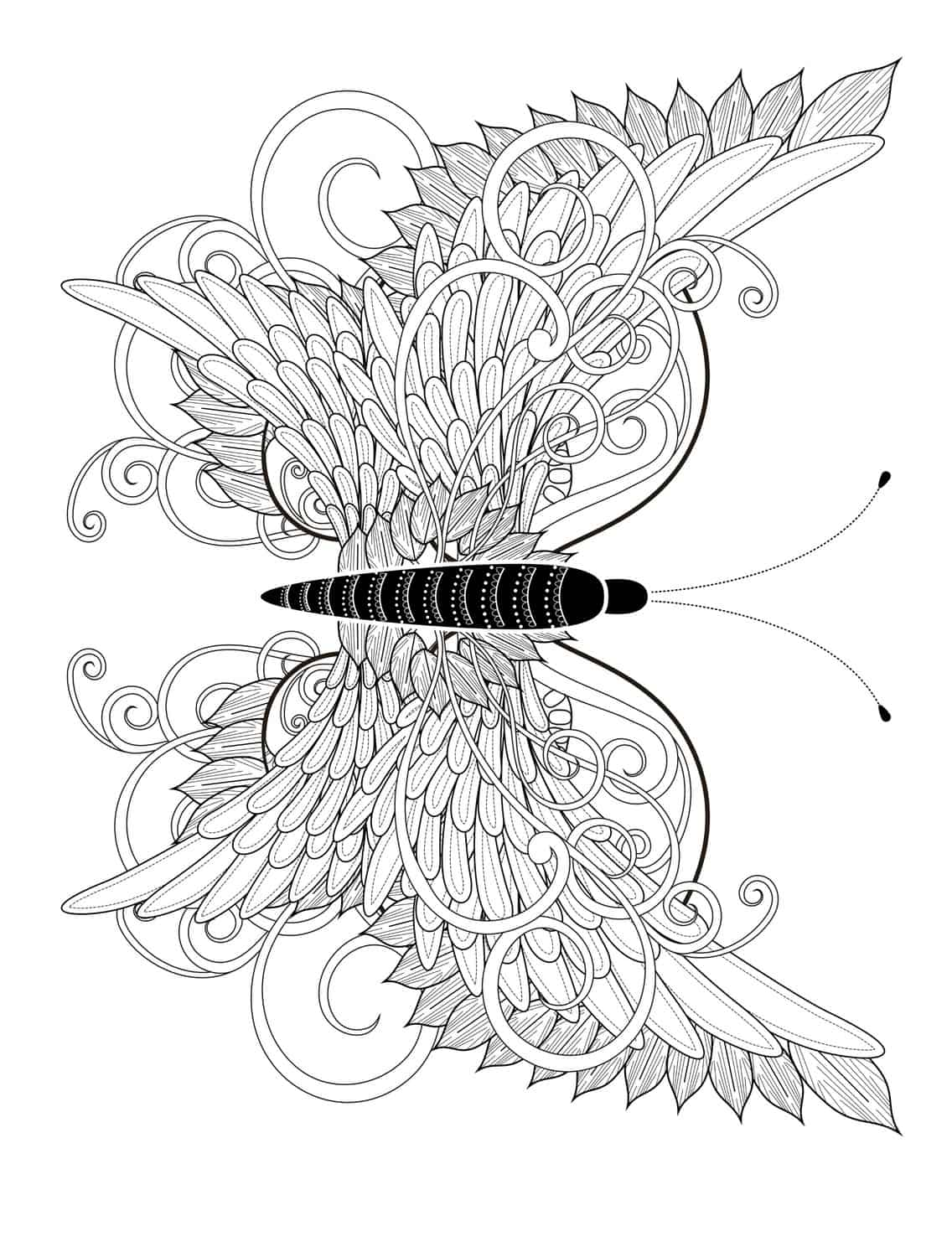 23 free printable insect animal adult coloring pages for Adult coloring pages to print