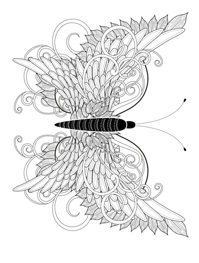 insect printable coloring pages - photo#30