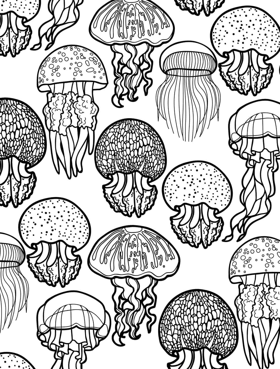 Ocean Coloring Pages For Adults 23 Free Printable Insect & Animal Adult Coloring Pages  Page 8 Of .