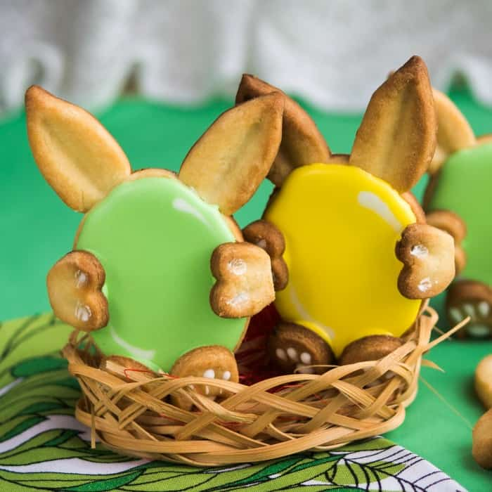 easy bunny sugar cookies recipe sq