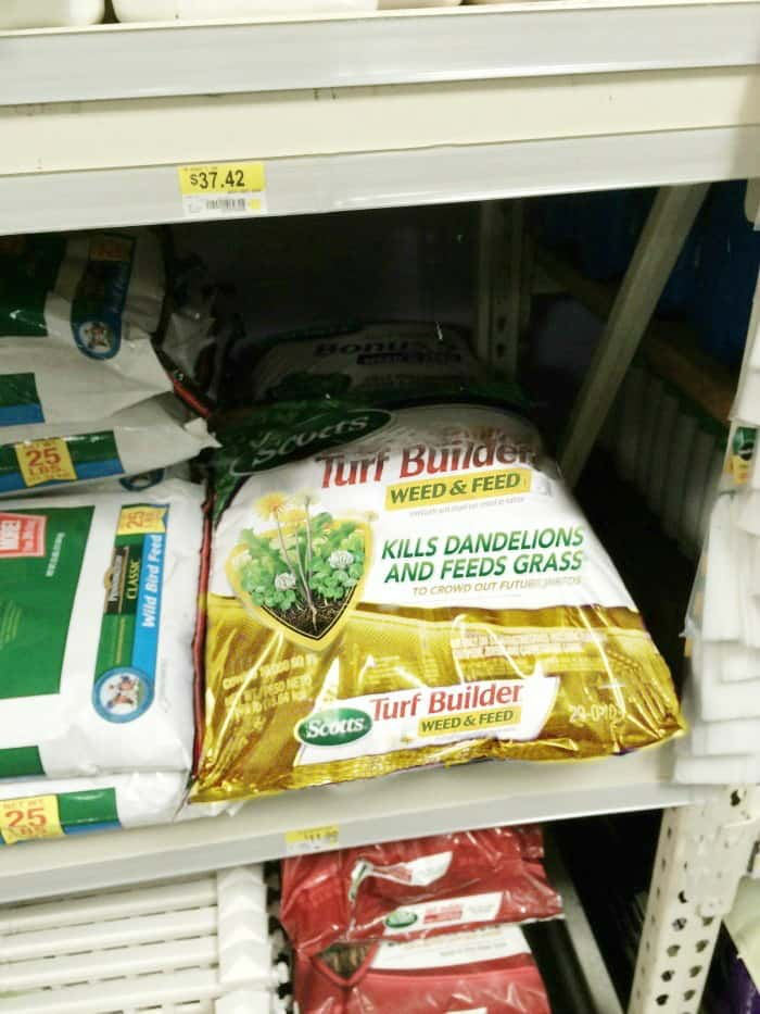 how to help a toddler garden instore12