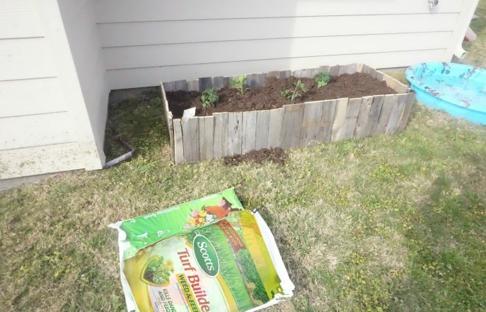 how to upcycle a pallet into a raised garden bed hero