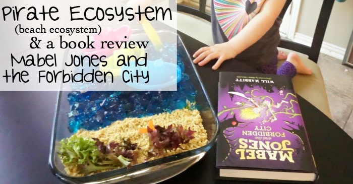 pirate ecosystem (beach ecosystem) & a book review of Mabel Jones and the Forbidden City fb