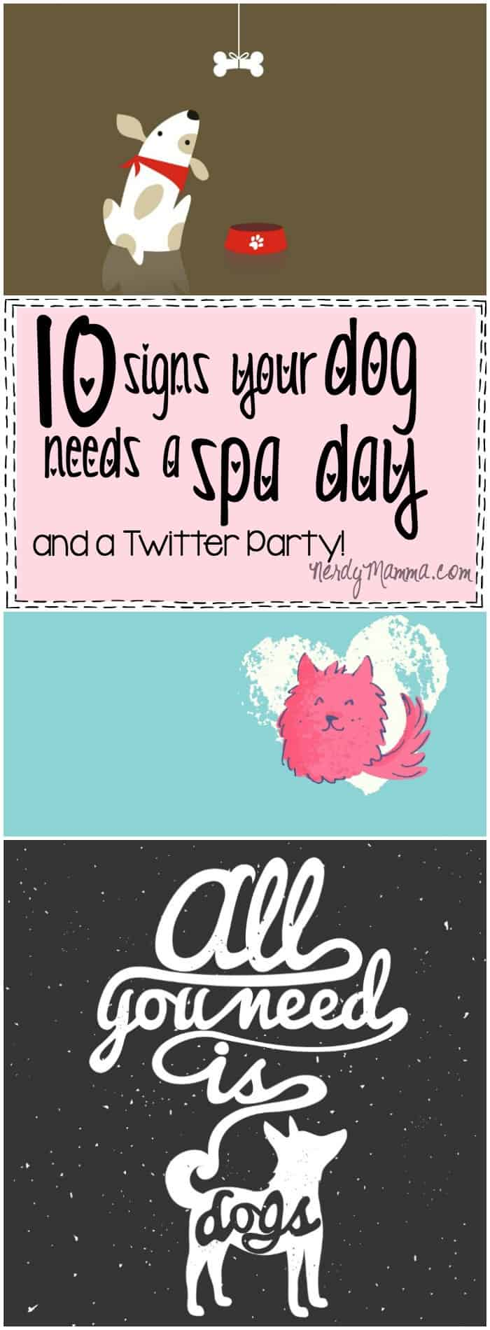 10 FUNNY signs your dog needs a spa day and adorable free dog printables! How cool!
