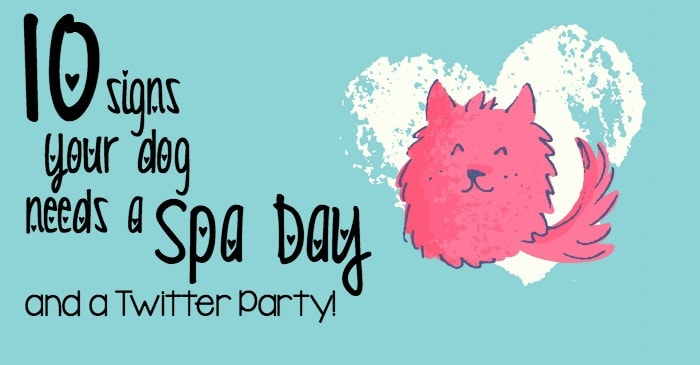 10 signs your dog needs a spa day and a twitter party fb