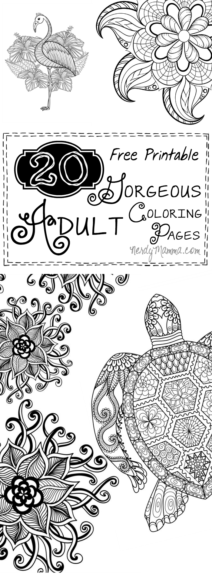 Picture for coloring printable - These 20 Free Printable Gorgeous Adult Coloring Pages Are So Pretty I M Thinking