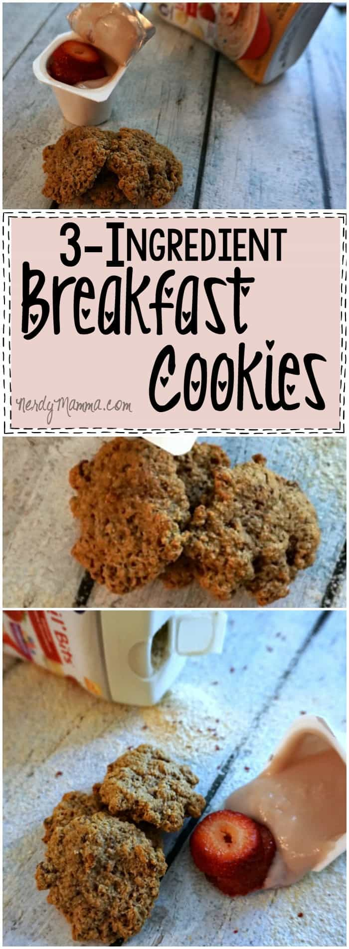 These 3-Ingredient Breakfast Cookies are so easy! I love how these are so simple...but have so many good vitamins and minerals. Awesome!