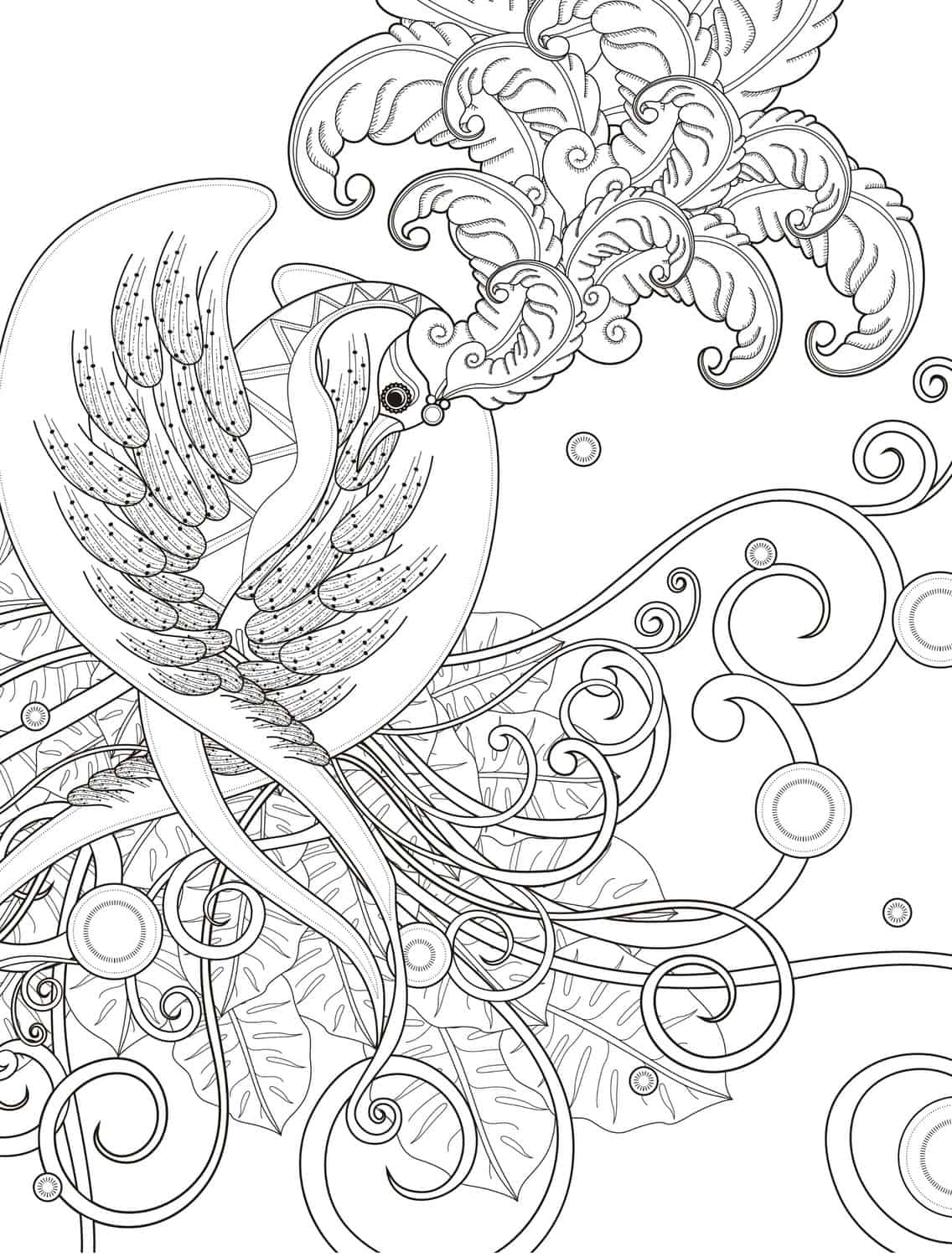 4400 Free Printable Hummingbird Coloring Pages For Adults Pictures