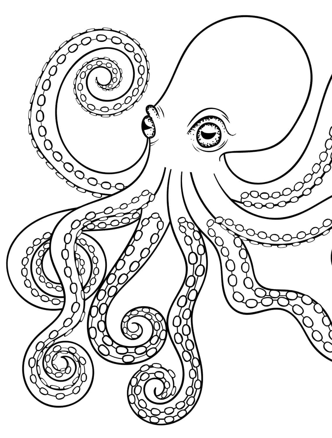 1000 Images About Coloring Sheets On Pinterest