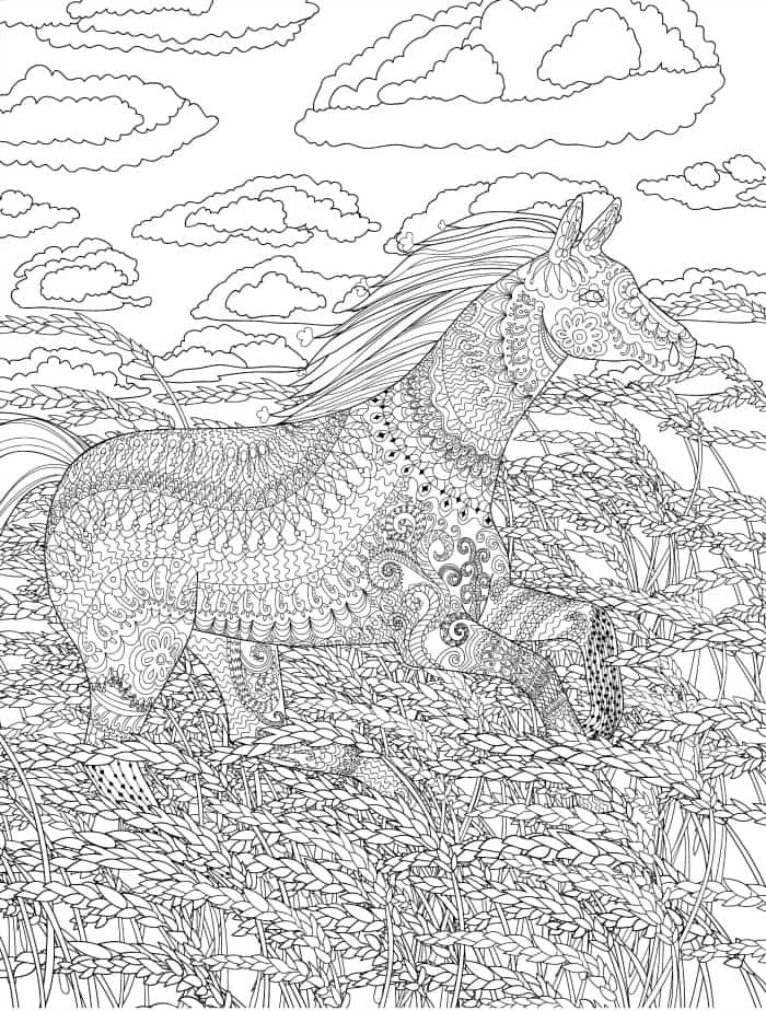 painted horse busy adult coloring page you can download for free