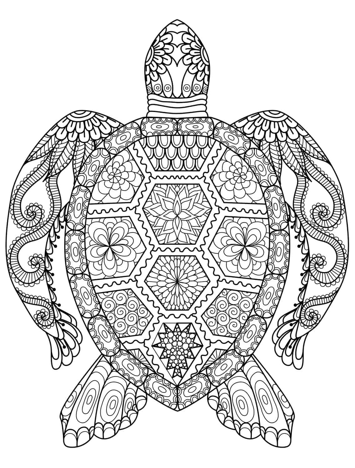 sea turtle coloring page for adults for free download - Turtle Coloring Pages For Adults