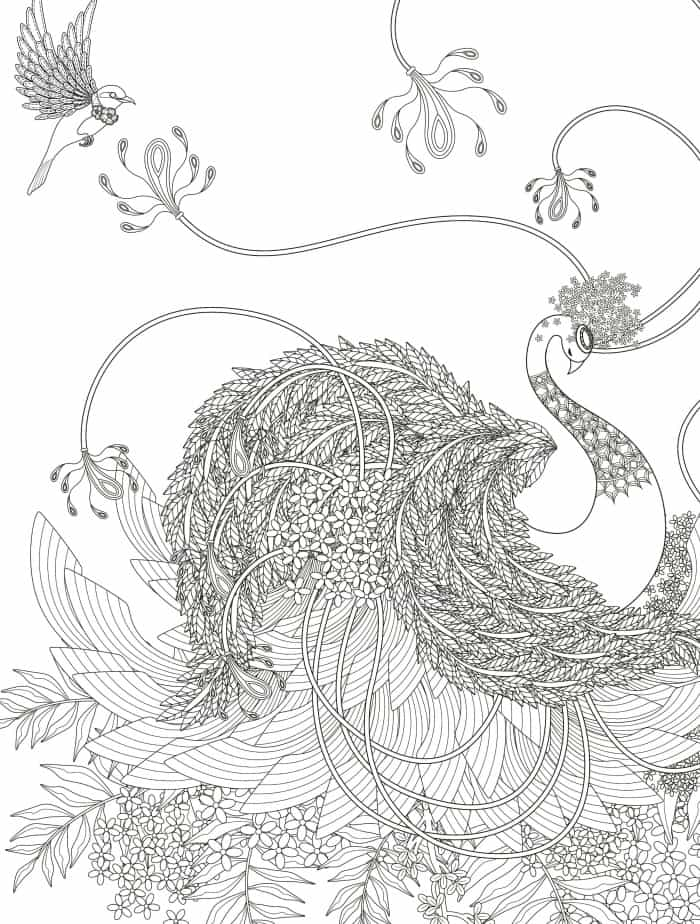 very detailed adult coloring pages available for free download