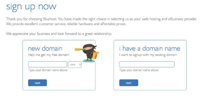 domain sign-up with ninja